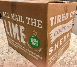 HelloFresh Meal Delivery Box Arrives